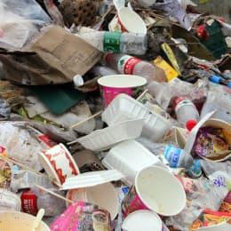 衛生環境是災民其中一個擔憂的狀況
