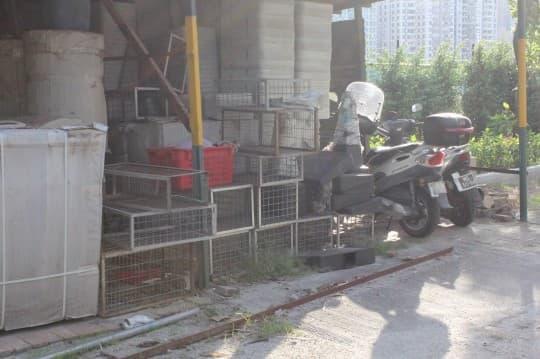 現場有不少空鐵籠,但保安員只回應鐵籠用來「放東西」
