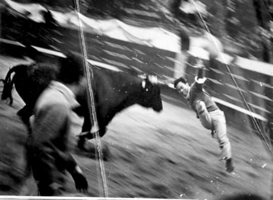 珍貴的舊工人球場鬥牛照片