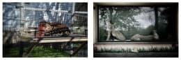 動物與雕塑/攝影:Sara Munari (2)