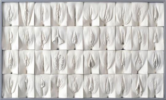 《陰道長城》由400個陰道雕塑所組成,為免過於色情,Jamie McCartney用上全白色。