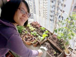 空間不需要很多。只要露台有足夠的陽光,人人都可是陽台農夫,圖為大葱。