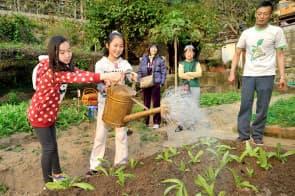 學校和團體可預約入住金像農場的渡假屋體驗農耕樂