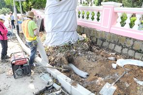藉著路面重鋪工程,在古樹周邊埋放透氣物料 。