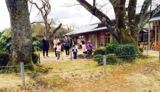 兒童遊戲區多用泥沙地,孩子在草坪玩耍,家長只在旁邊看。