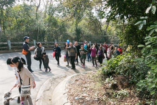 公民力量上周日組織市民到叠石塘山實地了解山上的植被和生態價值。
