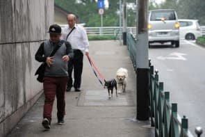 不少市民對本地獸醫缺乏信心。