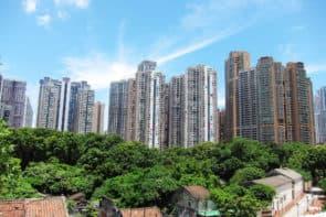 文化局將對爆竹廠提起文物評定程序,為氹仔舊區留下一片綠地。