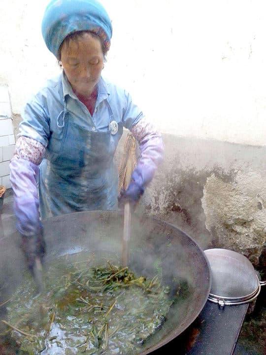 煮染料植物——植物染的一個步驟。