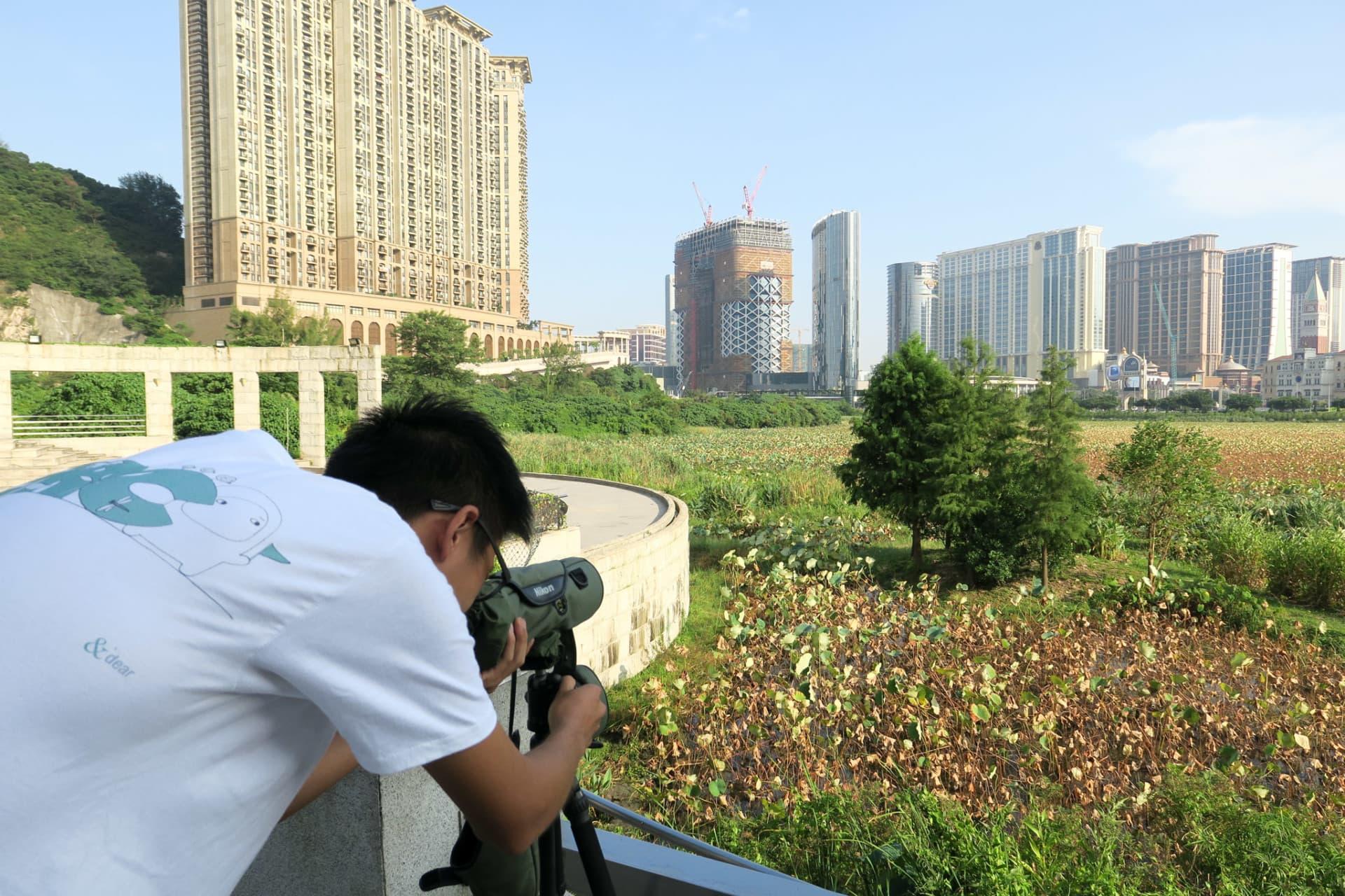 生態教育及資源中心(澳門)舉辦觀鳥活動