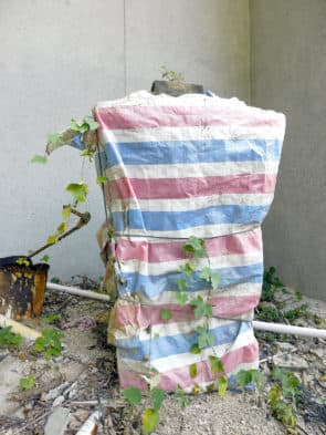 樓梯旁有一碼頭碑記,現用紅白藍布包裹,並開始長有雜草