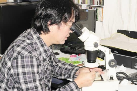 利用顯微鏡觀察蜻蜓卵粒。