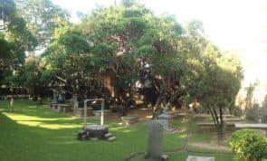 新教墳場,又名「馬禮遜墳場」或「基督教墳場」,位於白鴿巢東方基金會(曾是英國東印度公司大班住所)旁