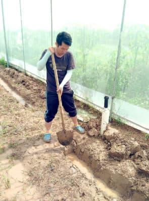 在真正的供菜農場,種菜前要先開墾農田,挖掘水溝 。