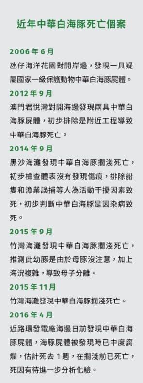 近年中華白海豚死亡個案
