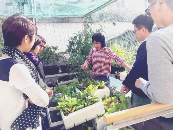 透過農作,重新認識自己的城市,連結社區的資源,增加食物安全的意識。
