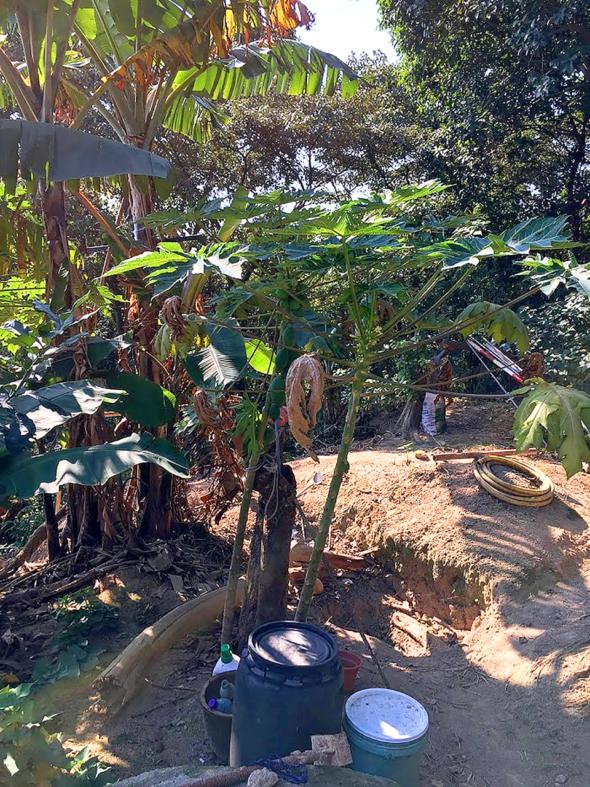 青州山上有人開墾種植。