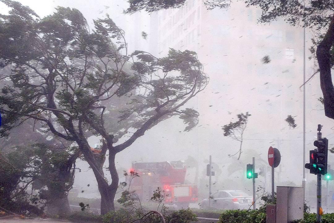 2017年8月23日,強颱風「天鴿」橫掃本澳,所引發的風暴潮淹浸本澳大部分地區。