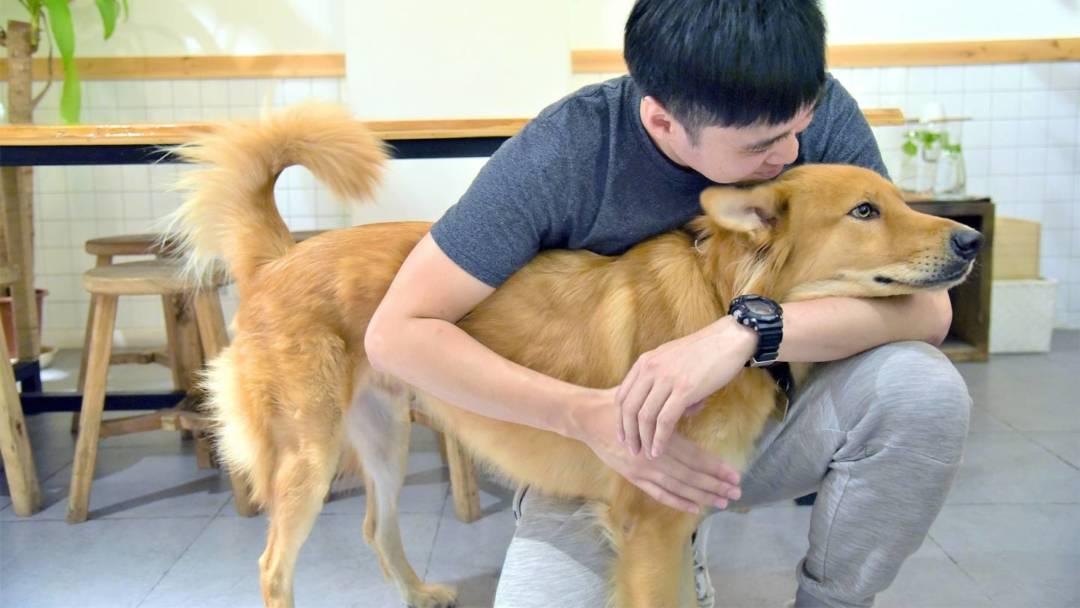 包文俊,澳門唯一一位獲得國際認可的全職犬隻行為訓練師。