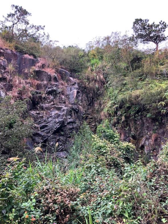 發現錦地羅的坡地正處在開發地段。