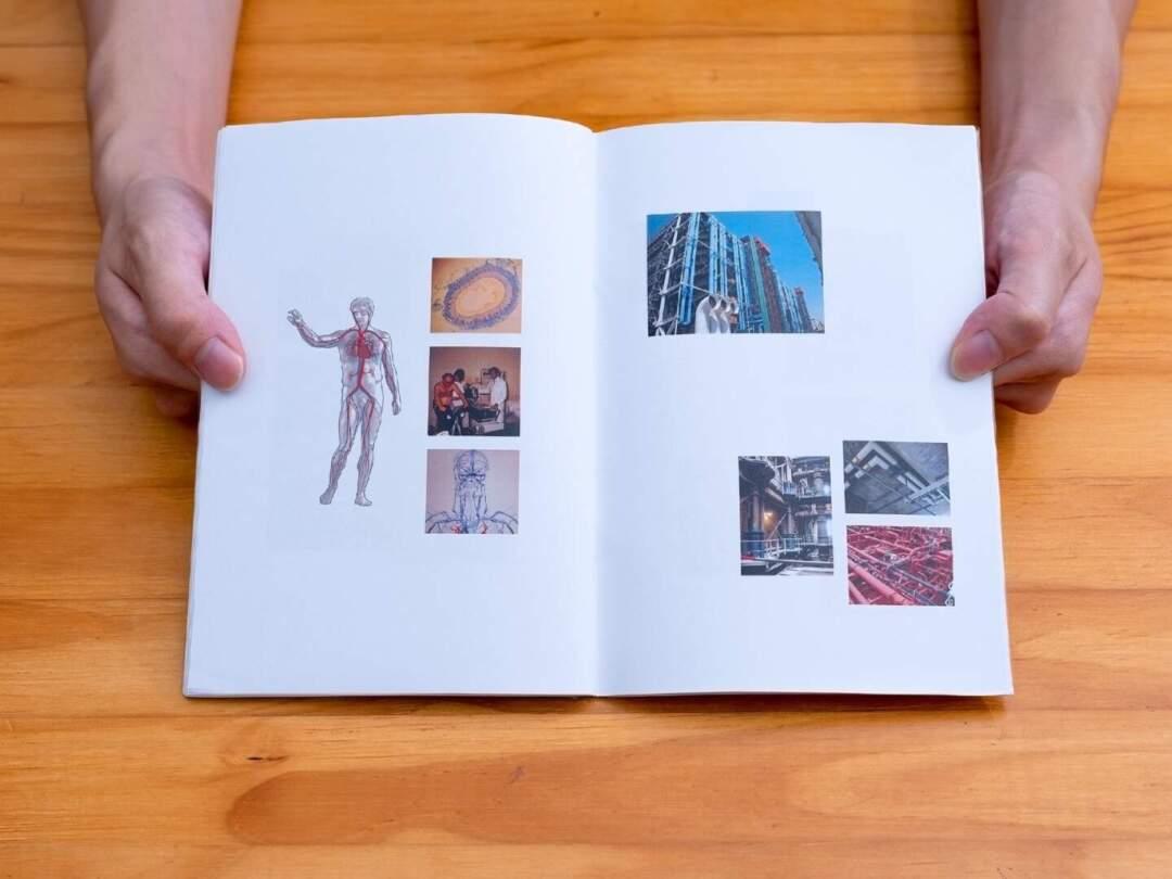 《Comparative Anatomies》/Marcus Yee 。