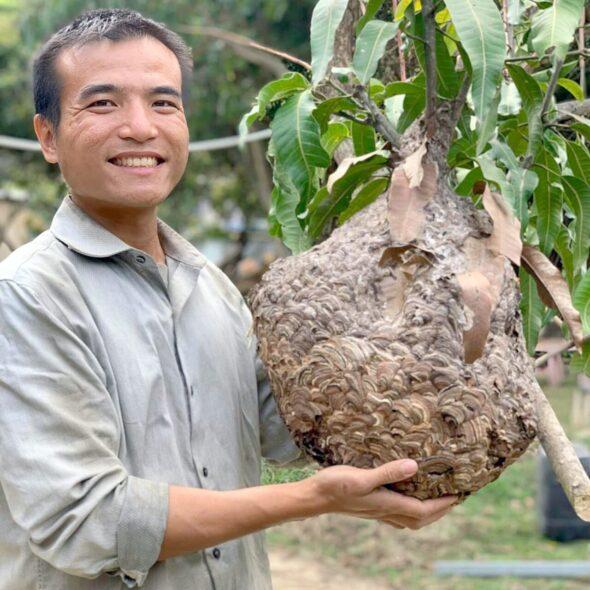 香港自然導師阿丁。